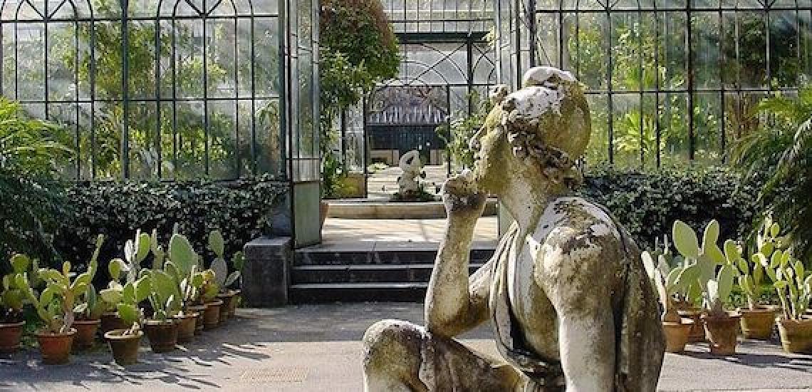 Piantate 195 viti per la rinascita del vigneto urbano dell'Orto Botanico di Palermo