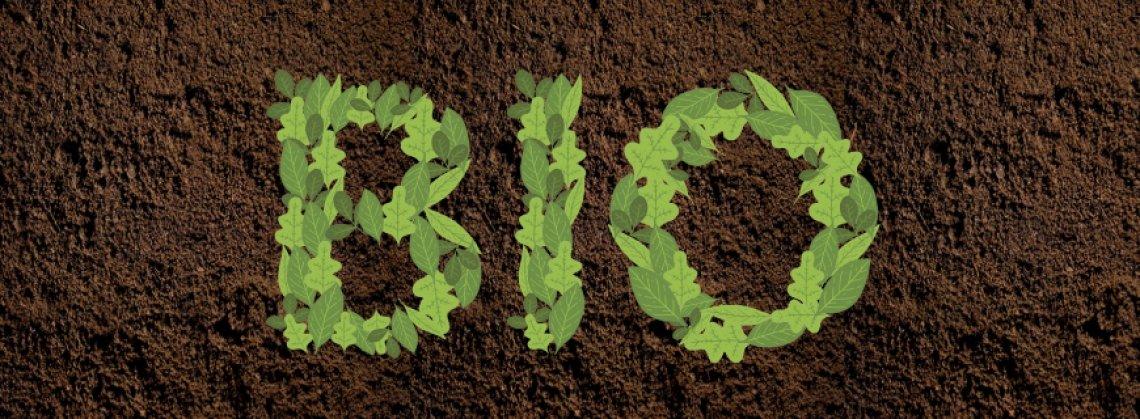 Una dieta biologica purifica il corpo dai fitofarmaci