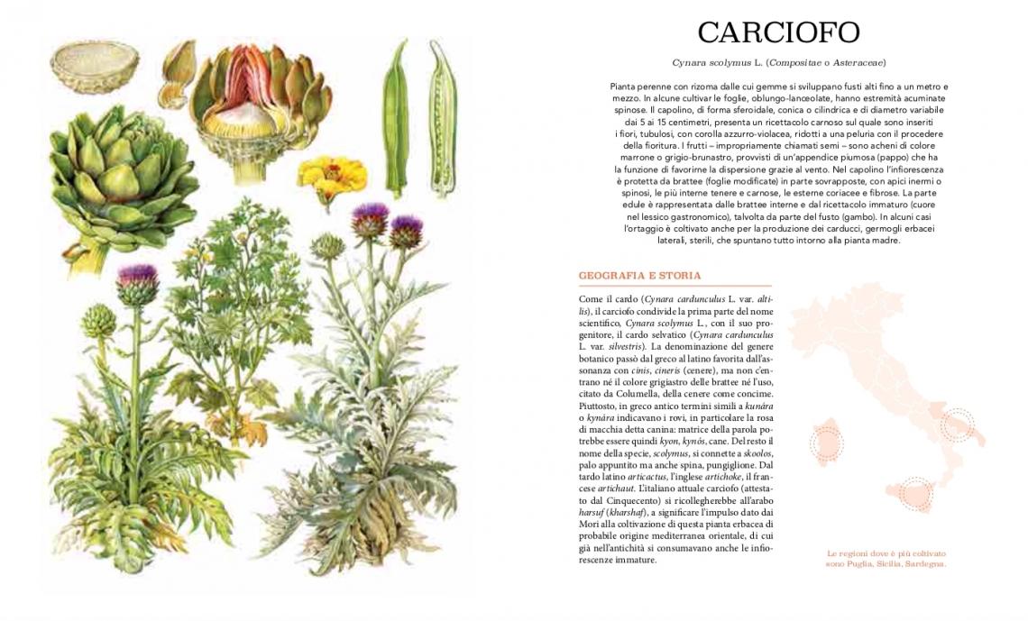 Atlante gastronomico dell'orto: il libro per avviare una piccola rivoluzione gastronomica