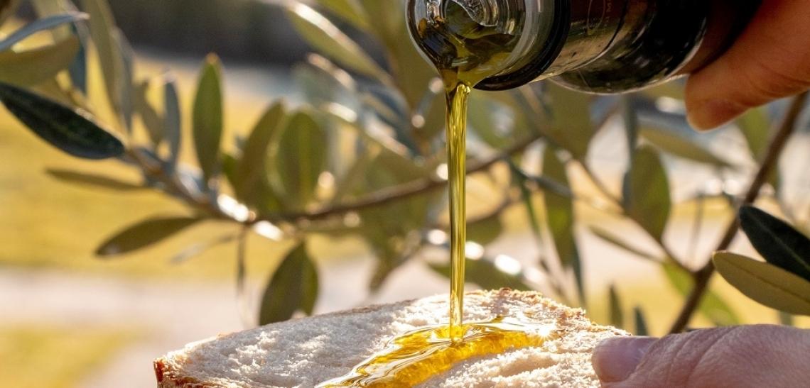 Marzo mese dell'olio d'oliva a Fico di Bologna
