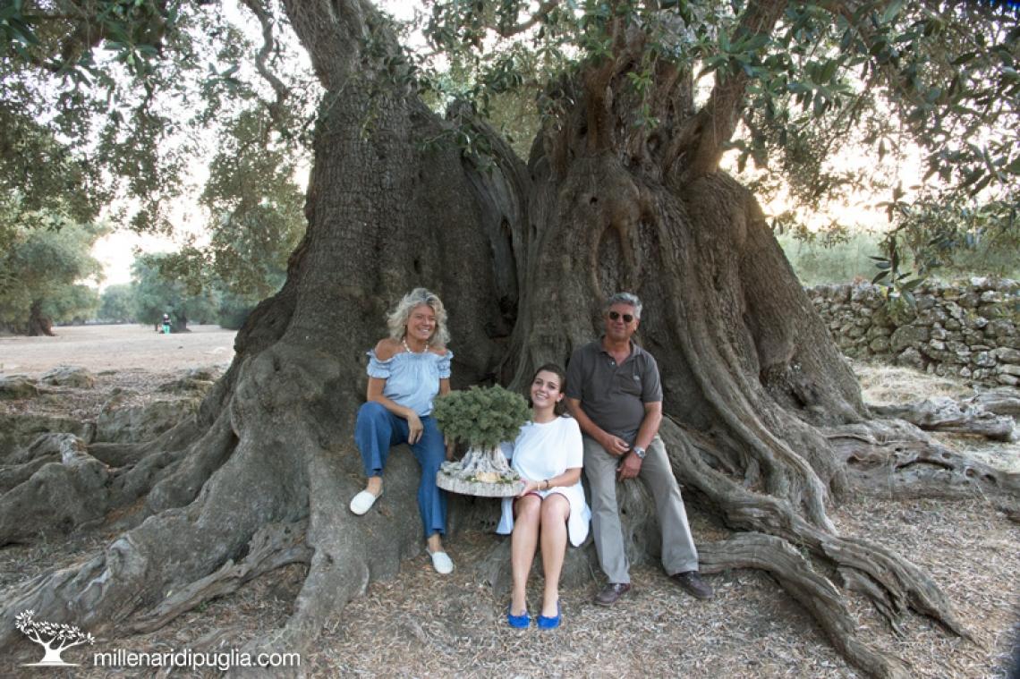 Alla terza edizione il premio al miglior olivo monumentale di Puglia 2019