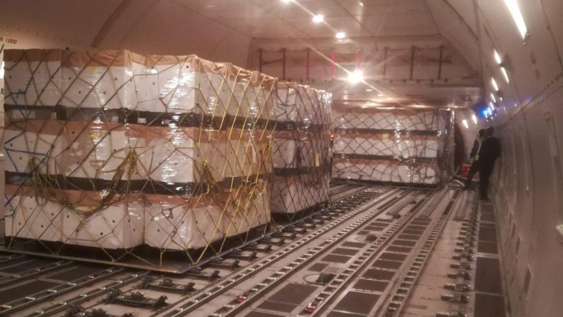 156 mila olivi trasportati dalla Spagna in Arabia Saudita in meno di 24 ore