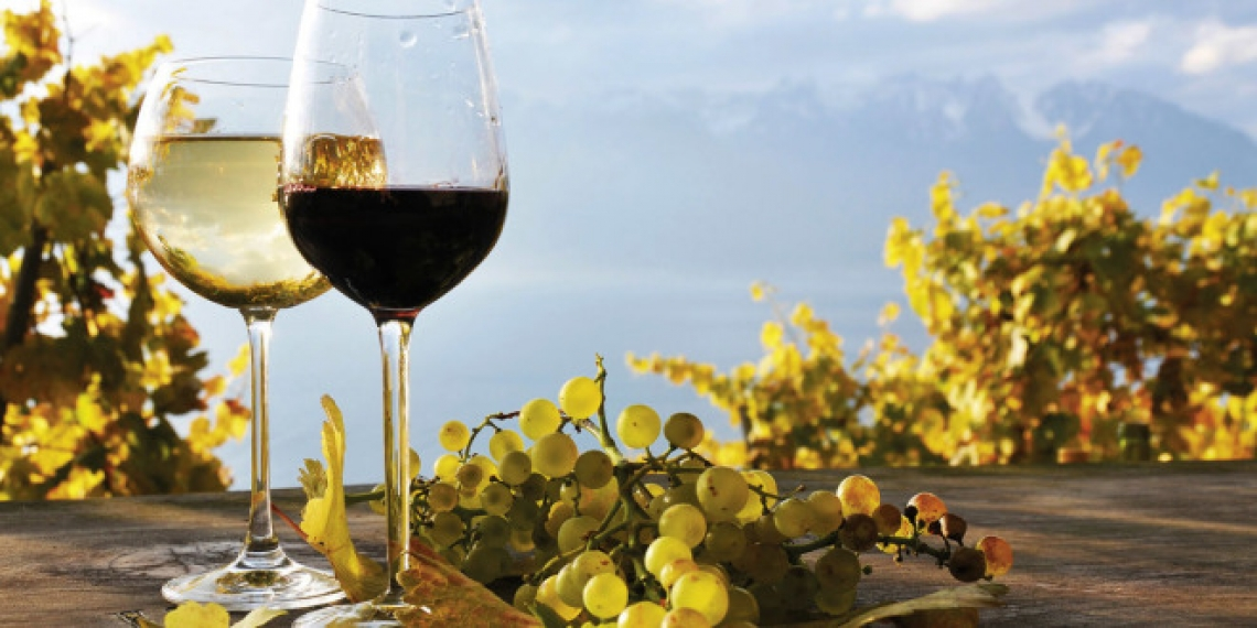 Il mercato tedesco del vino: tanti volumi ma poco valore