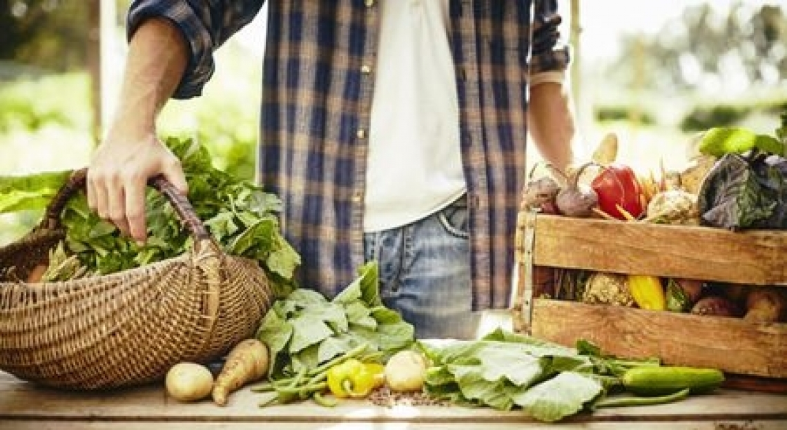 Gli italiani amano sempre di più gli alimenti biologici