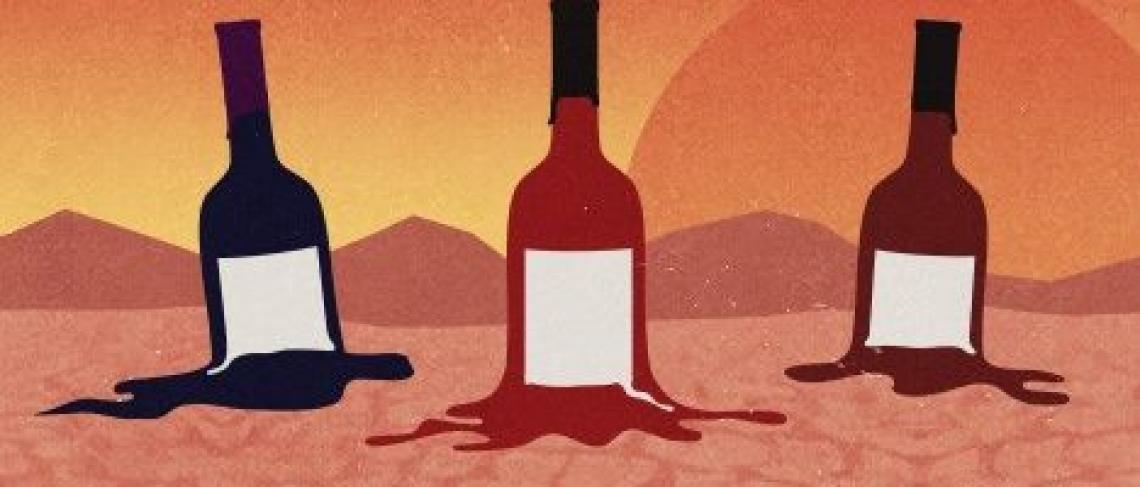 Il mondo vitivinicolo mondiale contro il cambiamento climatico
