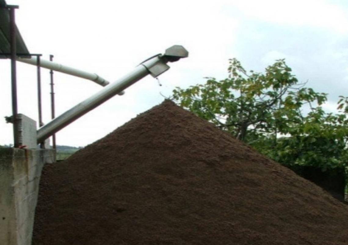 Concimare il terreno con sansa vergine di oliva, una buona idea?