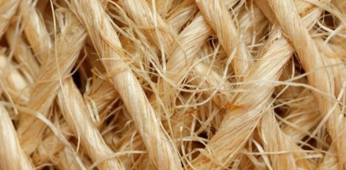 Una nuova economia basata sui tessuti naturali, grazie a fibre vegetali e animali