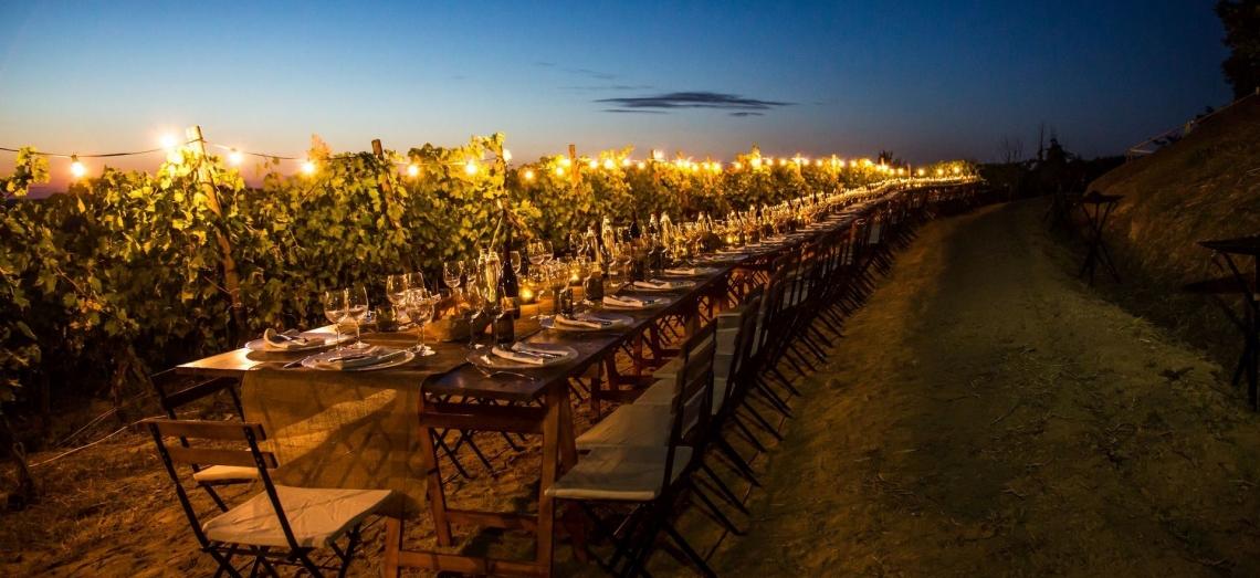 Aumenta la voglia di esperienze vitivinicole durante i viaggi