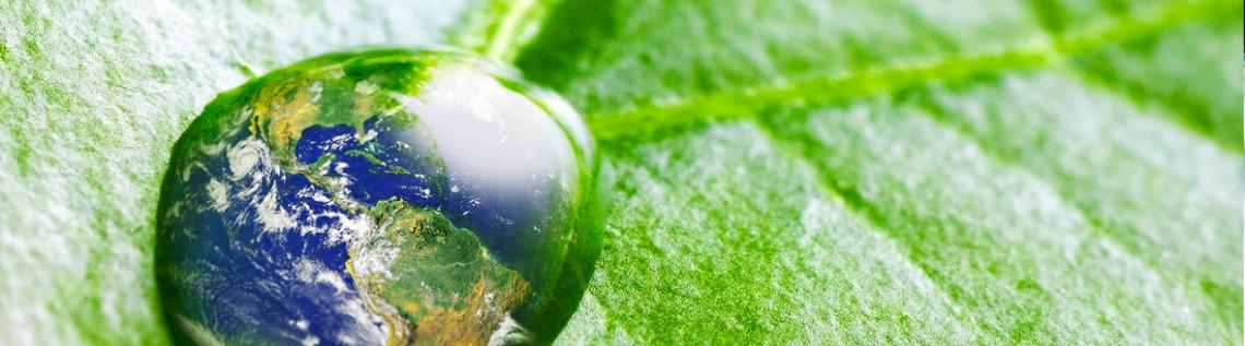 Le misure ambientali che possono far ripartire l'economia