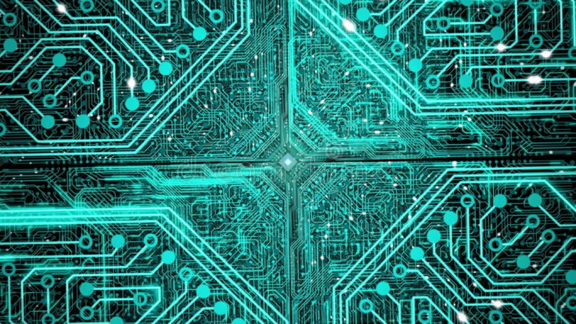 Nuova olivicoltura, un chip inserito nell'apparato radicale per la tracciabilità totale