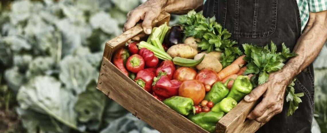 Km0 e biologico le parole d'ordine per avere un cibo salutare