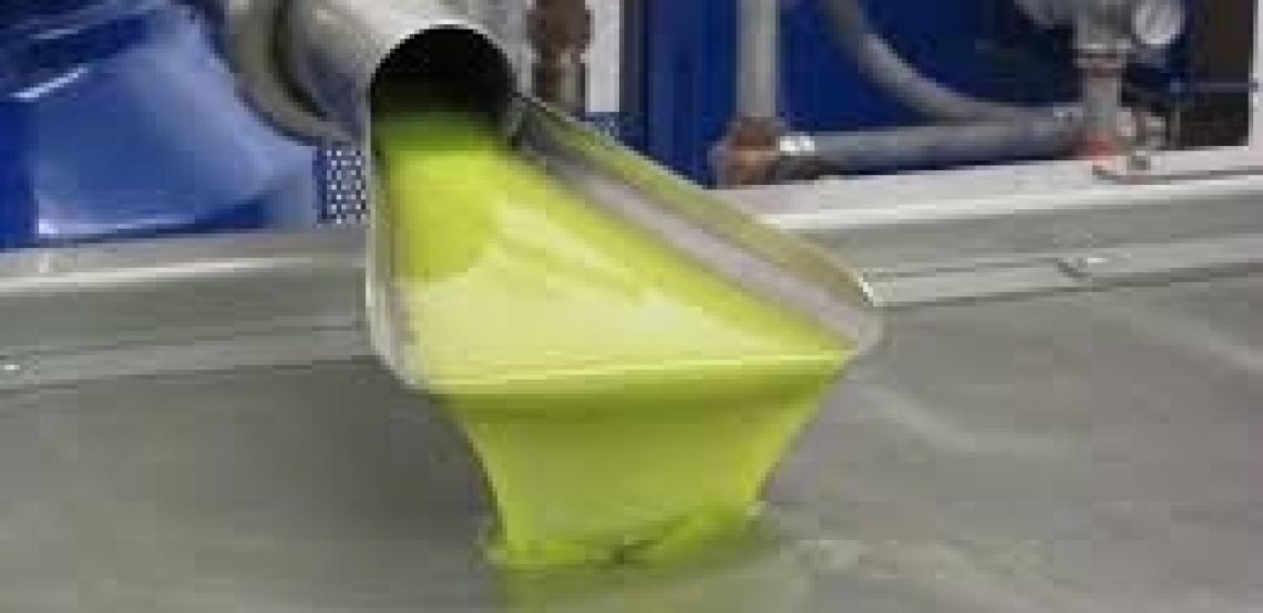 Il plasma non termico nell'estrazione dell'olio extra vergine d'oliva