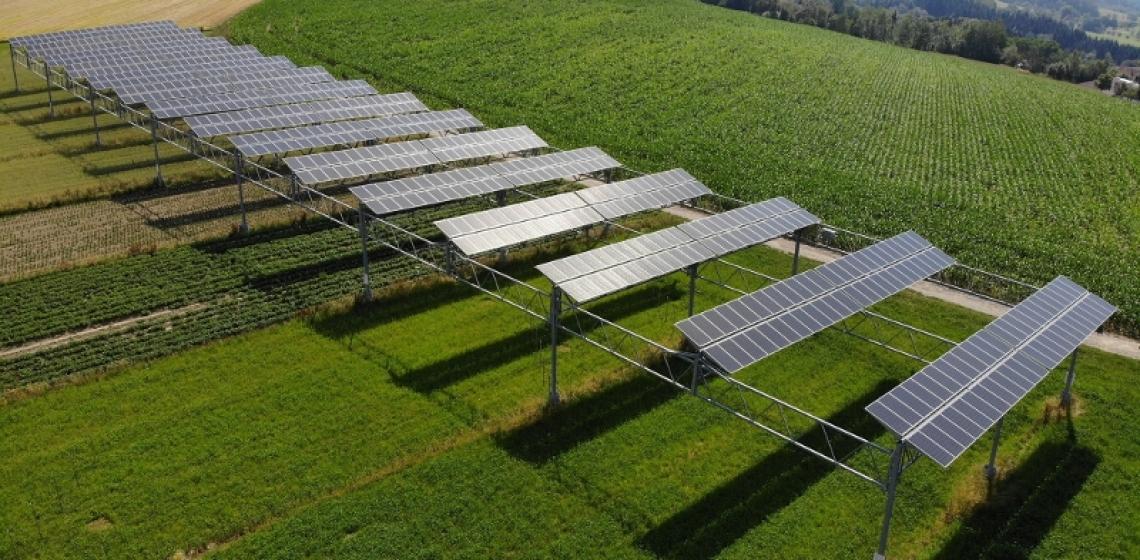 Combattere il cambiamento climatico in agricoltura con il fotovoltaico