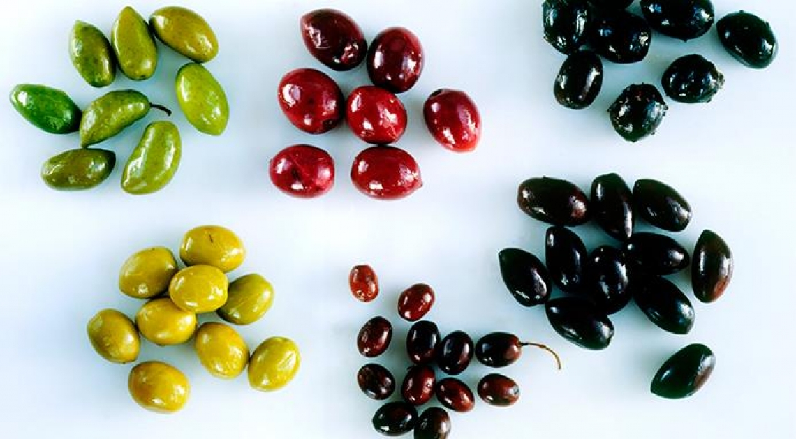Cresce il consumo e il commercio di olive da tavola nel mondo