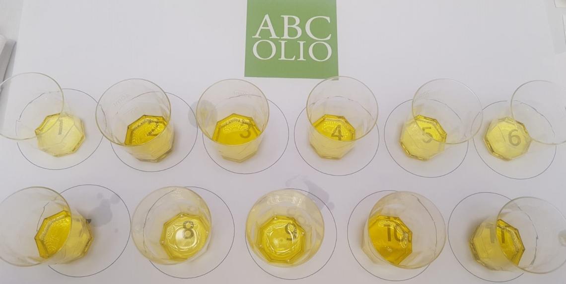 La Puglia olivicolo-olearia ha ancora qualcosa da offrire all'Italia?