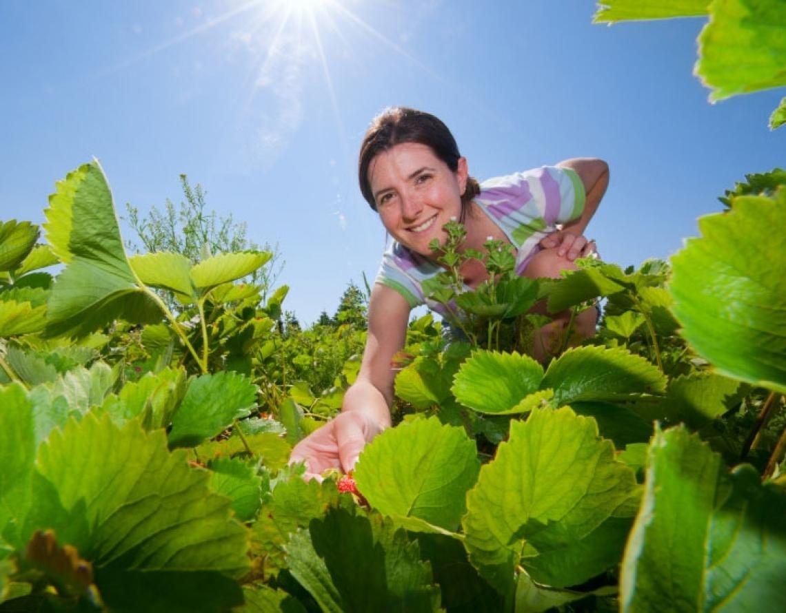 1° Maggio, anche per l'agricoltura una festa per pensare e sognare un nuovo domani