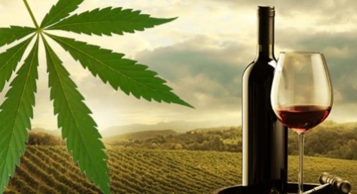 Ora il vino si aromatizza con la cannabis