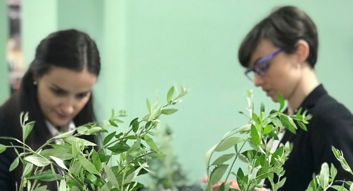 Più attenzione ai mercati emergenti per la rinascita dell'olivicoltura italiana