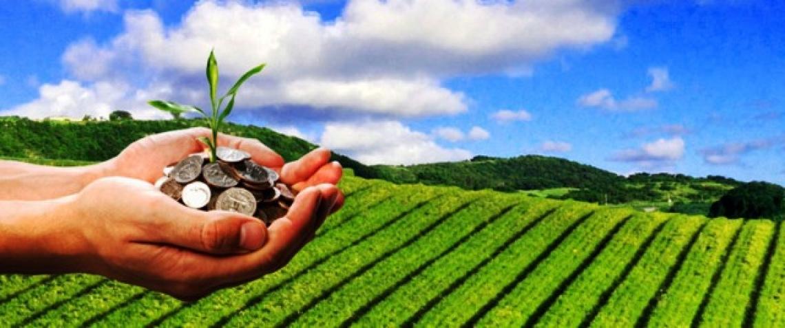 Bilancio positivo nel 2018 per l'agroalimentare italiano