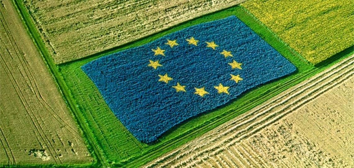 Domande Pac fino al 15 giugno con il via libera di Bruxelles
