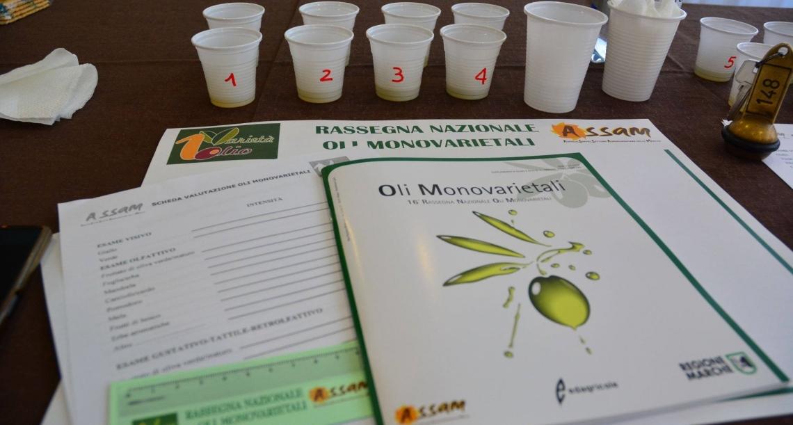 Oltre l'olio extra vergine d'oliva monovarietale, c'è il terroir