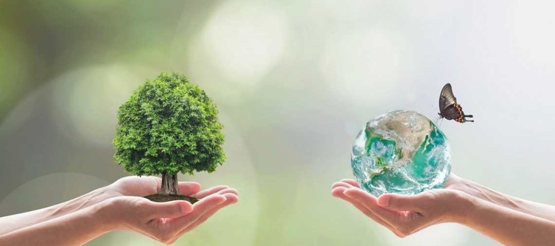 Sotto indagine il contributo della Pac alla salvaguardia della biodiversità