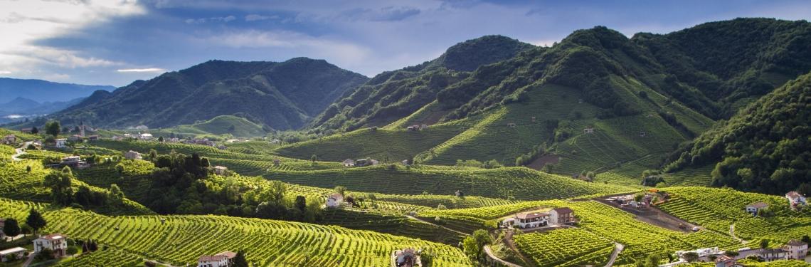 Il Prosecco, non solo vino ma una destinazione turistica per dare valore