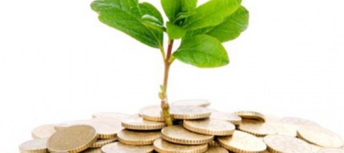 Finalmente torna a crescere il mercato assicurativo agricolo in Italia