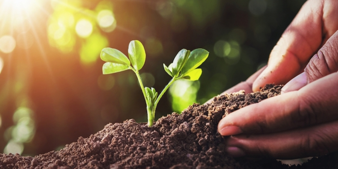 Sostenibilità agroalimentare e idrica:  il divario tra Nord e Sud è destinato ad aumentare