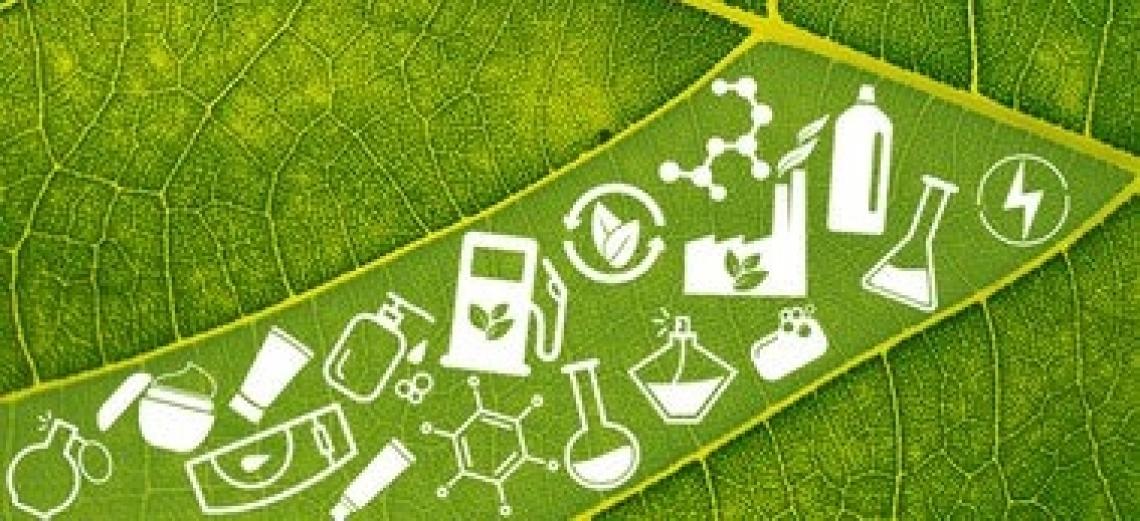 La bioeconomia italiana vale oltre 330 miliardi di euro annui