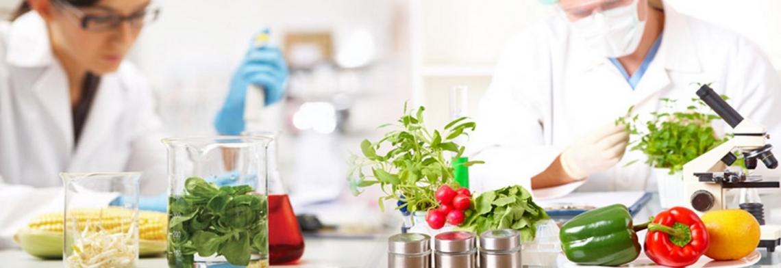 Troppe frodi senza scrupoli sul cibo: i risultati dell'operazione Opson VIII