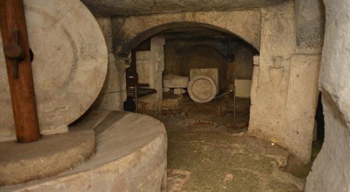 Un nuovo museo dell'olio extra vergine d'oliva a Torre Santa Susanna
