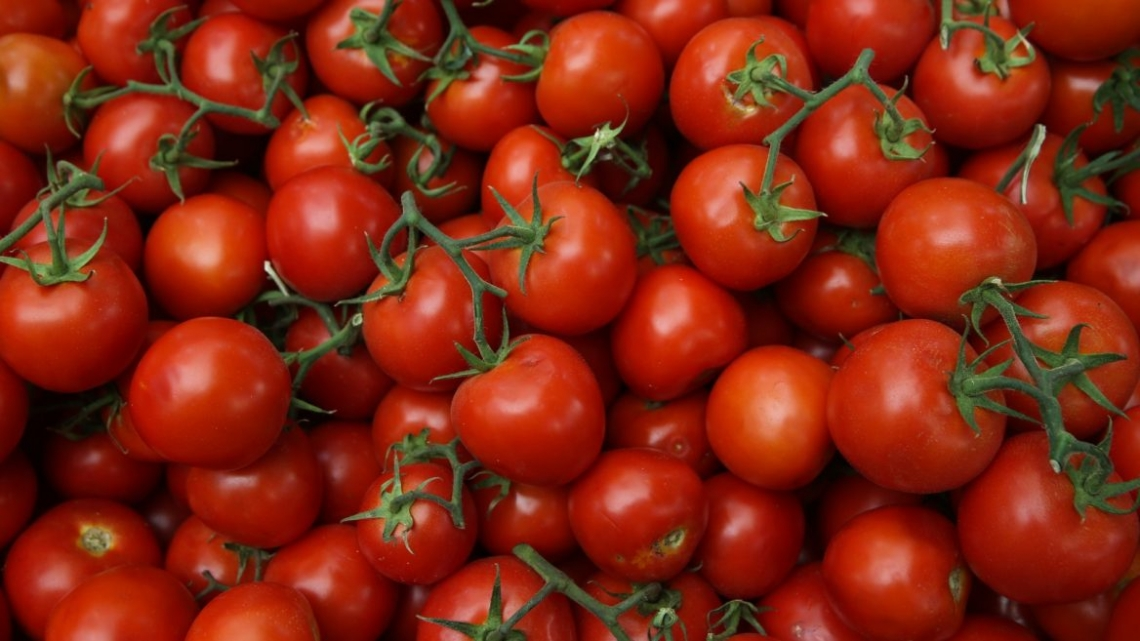 Troppi residui di fitofarmaci nei pomodori freschi