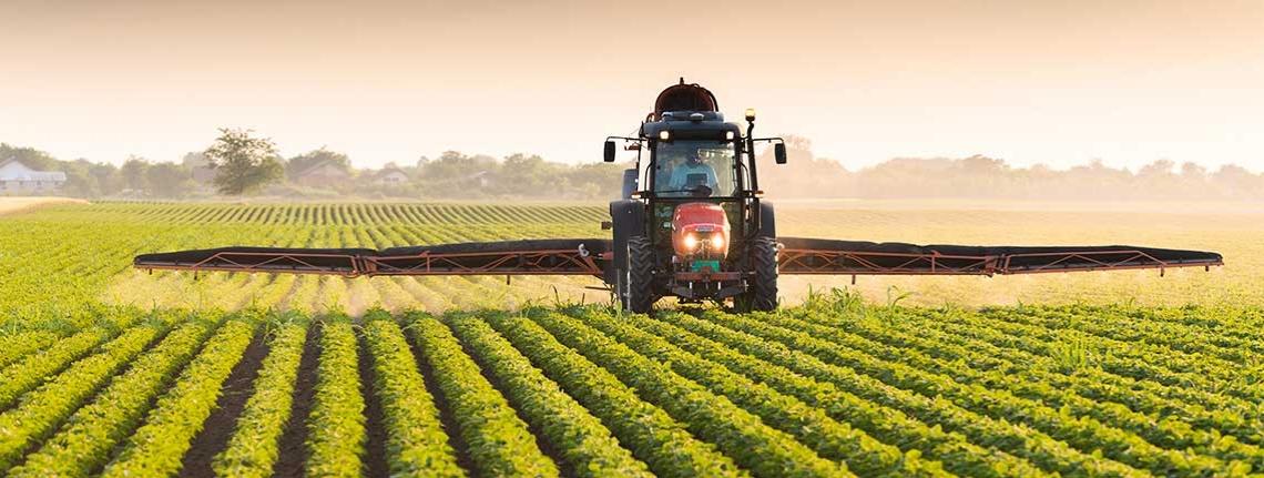 Segnali positivi per l'agricoltura nazionale, crescono occupazione e investimenti