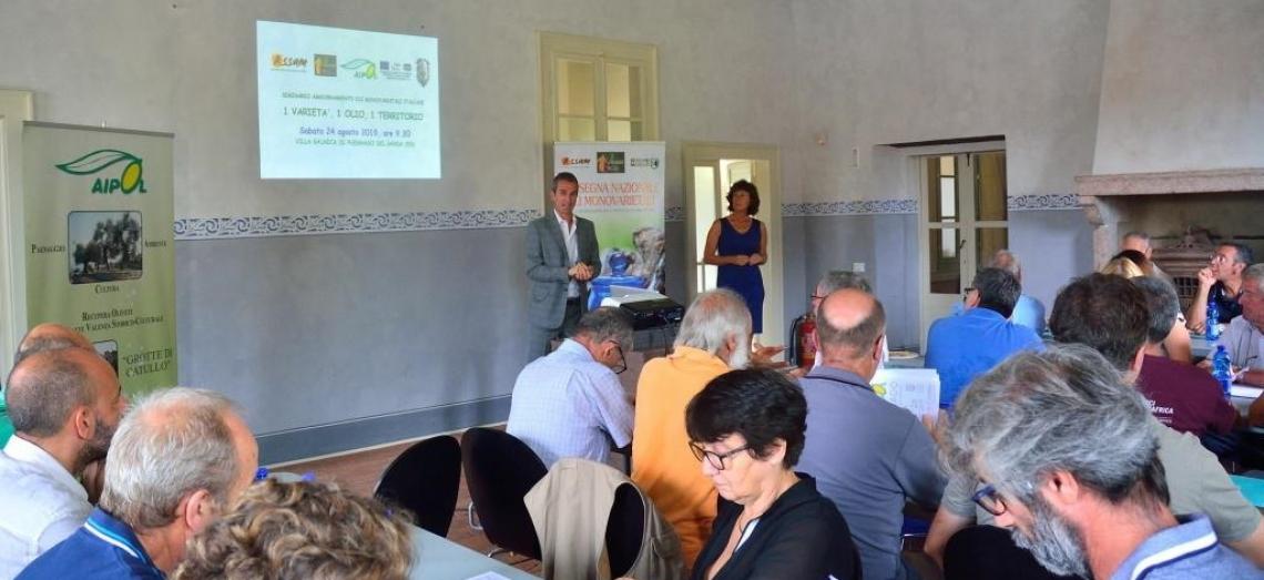 Il futuro dell'olivicoltura italiana legato a varietà e terroir