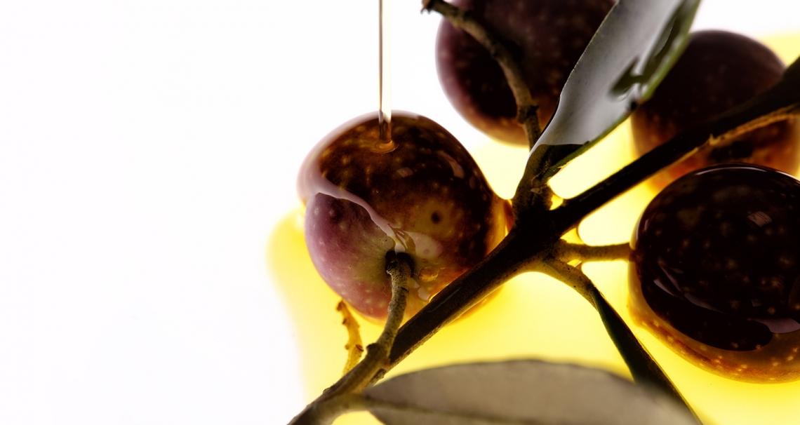 Quando l'olivo, l'olio extra vergine di oliva, la bellezza e l'etica fanno business