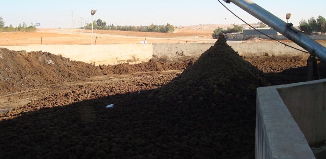 Sansa per le biomasse: è crisi per i sansifici italiani