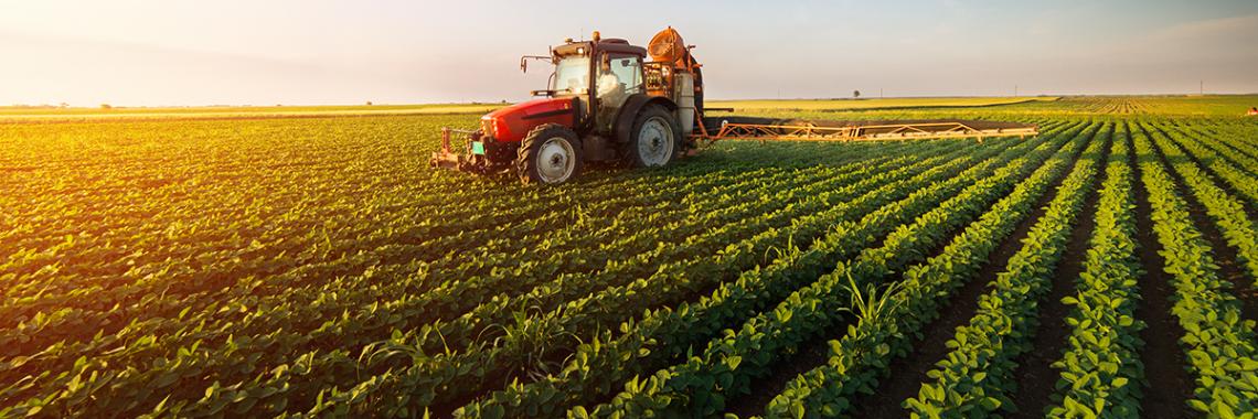 Aumenta ancora il valore dei terreni agricoli in Italia