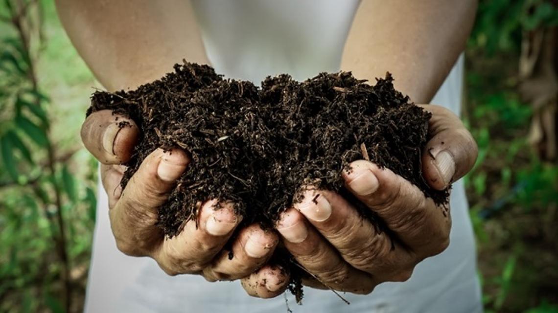 Il più grande impianto di compostaggio dell'Italia centrale è in Toscana