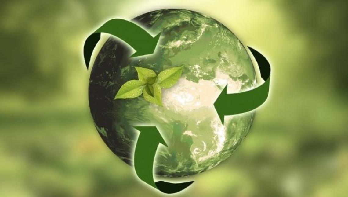 Il biologico al centro del Green Deal Europeo