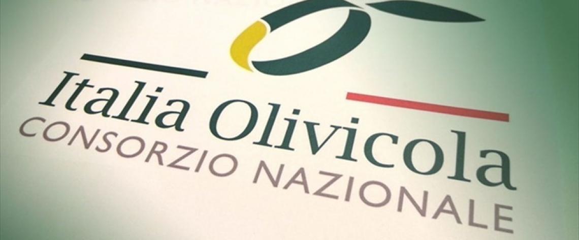 Cambio al vertice di ItaliaOlivicola: è Fabrizio Pini il nuovo presidente