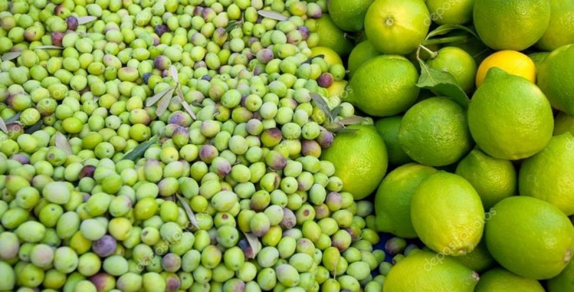 Arricchire l'olio extra vergine di oliva grazie alle scorze di agrumi