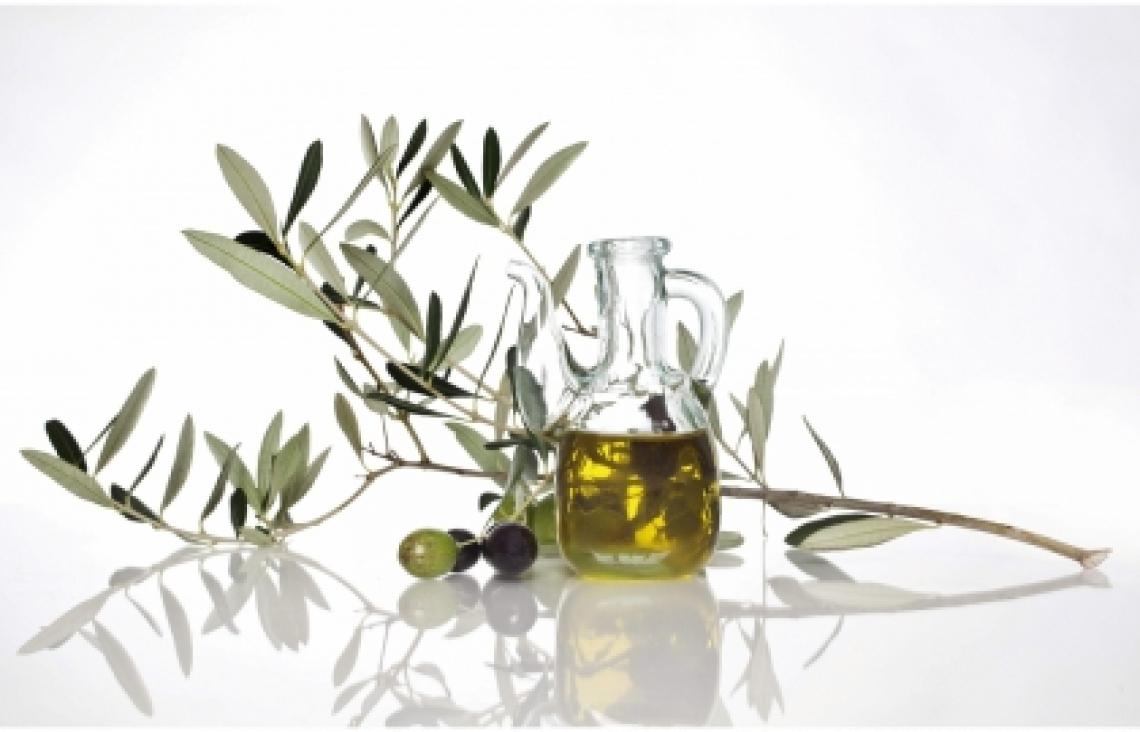 Non solo polifenoli, l'importanza dei triterpeni dell'olio di oliva sulla salute del cuore