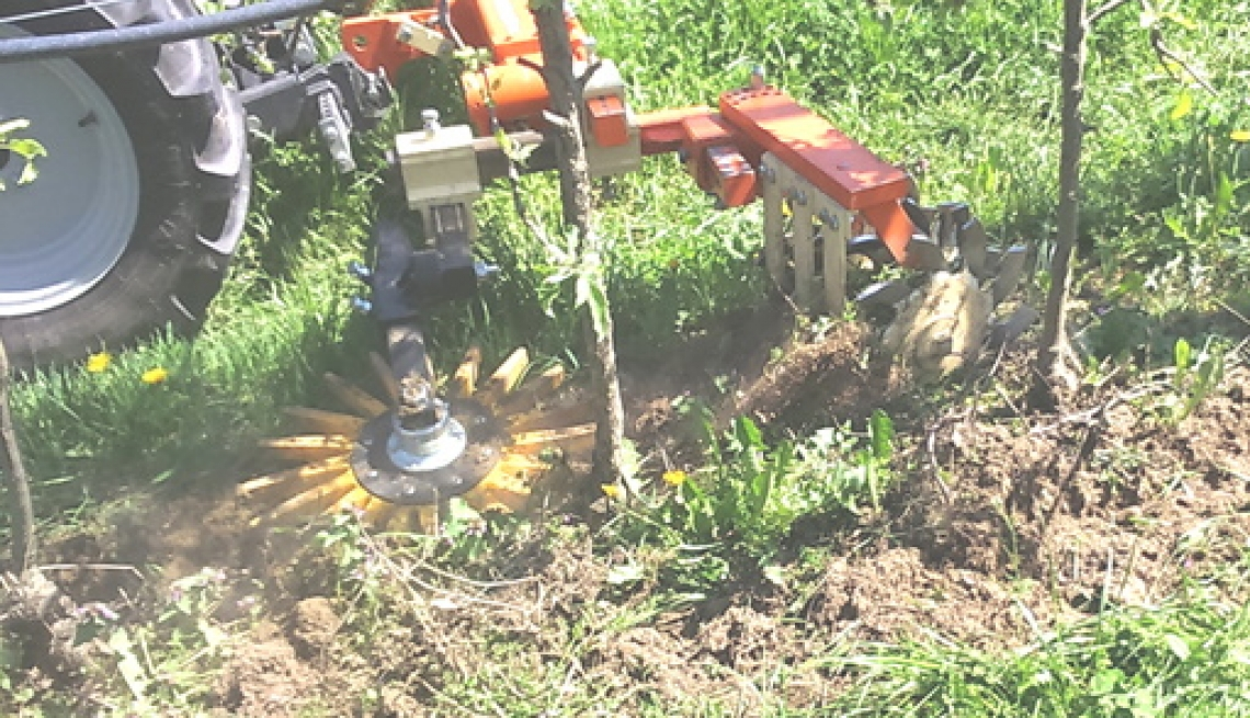 La gestione del cotico erboso e del terreno lungo il filare con mezzi meccanici