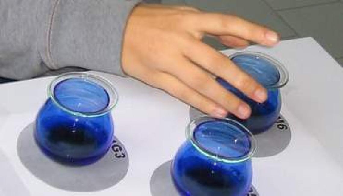 Un diploma universitario in valutazione organolettica dell'olio d'oliva vergine