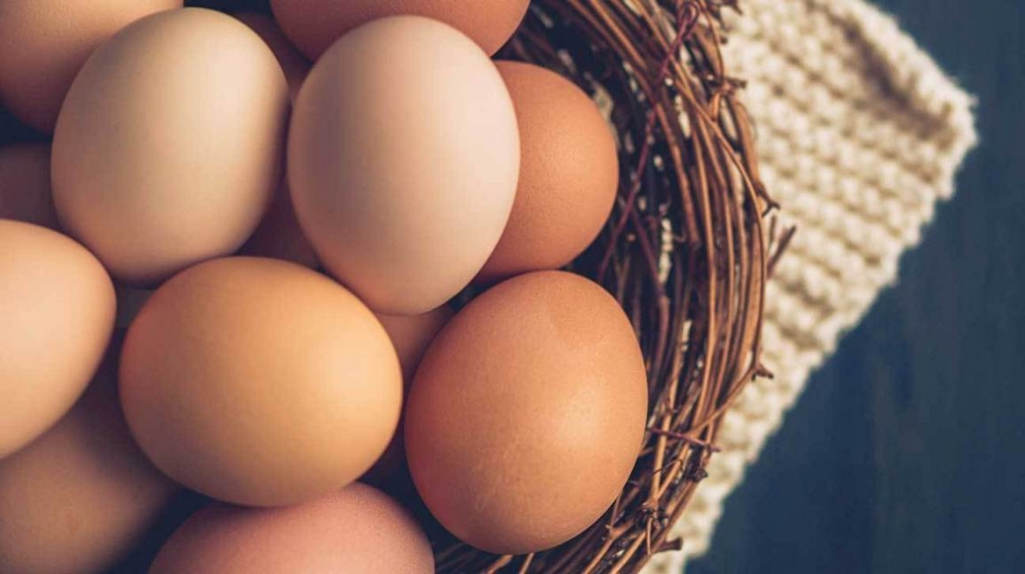 Un uovo al giorno non aumenta i rischi per il cuore