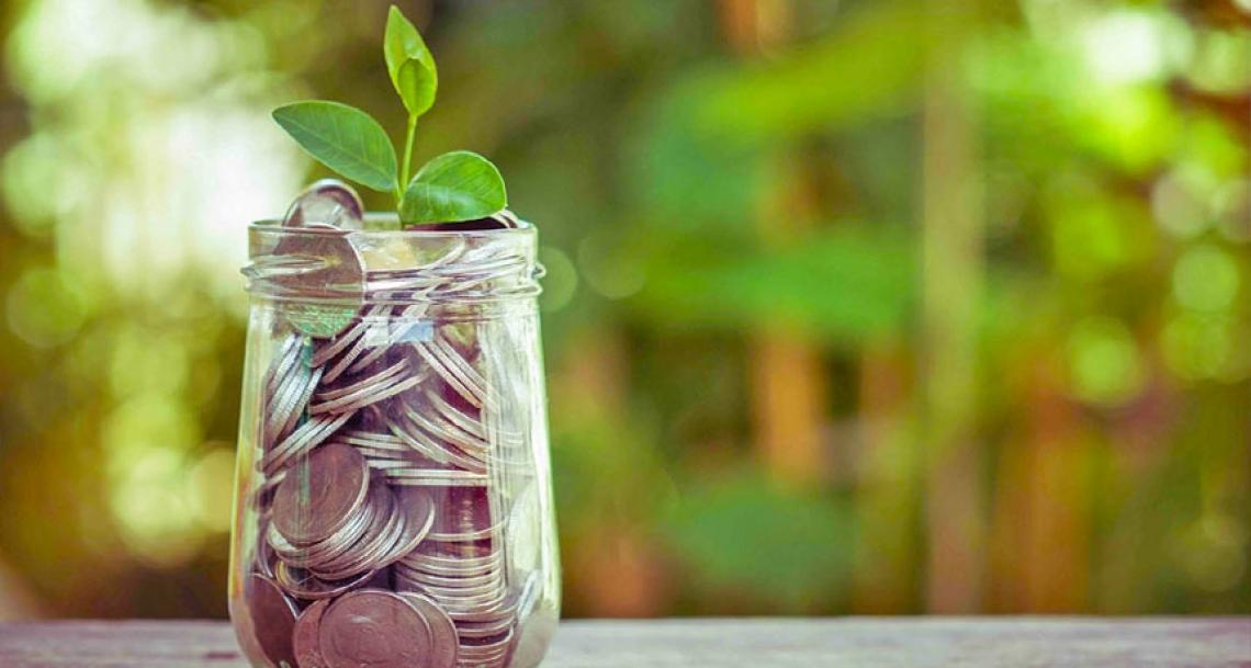 Agea accelera i pagamenti per le aziende agricole in difficoltà