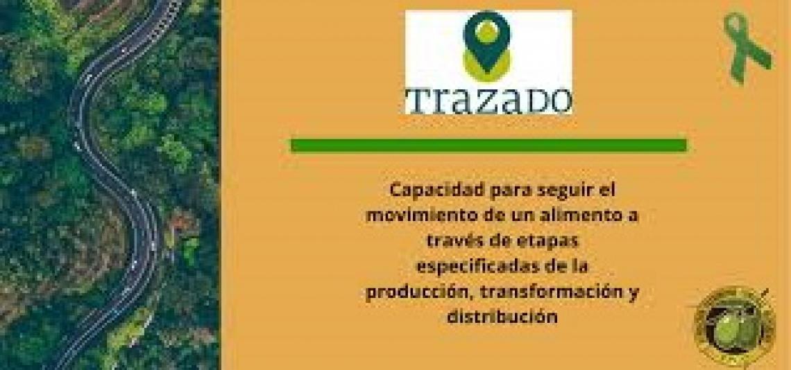 """La Fundación Patrimonio Comunal Olivarero sviluppa un """"registro Sian"""" per gli oli di oliva"""