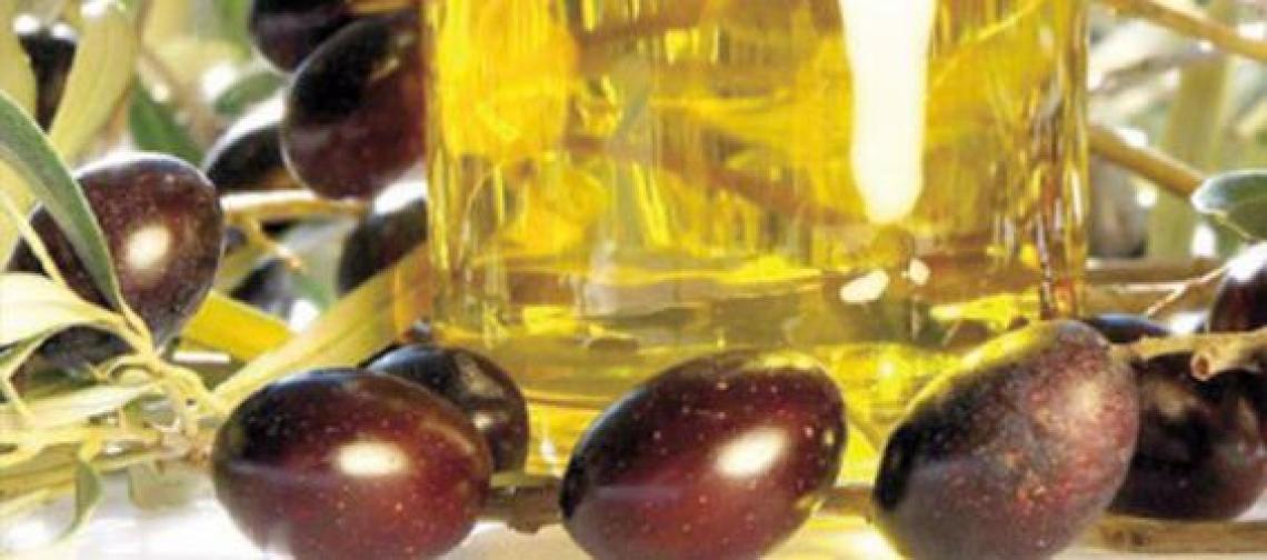 5 milioni di euro dall'Europa per lo sviluppo dell'olivicoltura marocchina