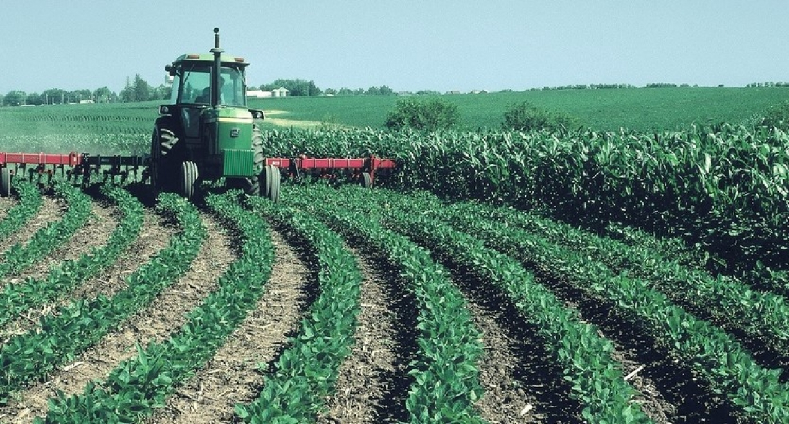 Online l'elenco dei mezzi tecnici utilizzabili in agricoltura biologica